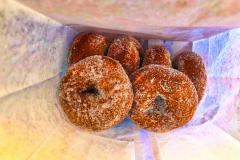 Donuts-web