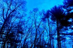 Blue-evening-sky-web