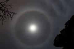Ring-around-the-Moon-web