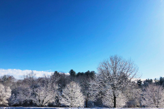 Snow-Skyline-web