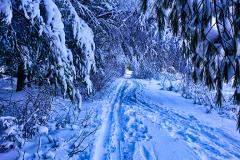 Stow-Snow-path-web