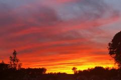 Sunset-bands-web