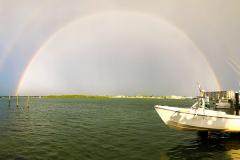 Tampa-Rainbow-web