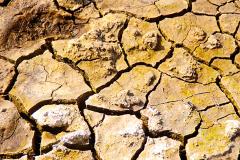 Yellowstone-cracked-mud-web