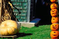 Pumpkins-on-a-pike-HDR