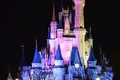 Castle-2-Magic-Kingdom