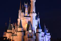 Castle-Magic-Kingdom